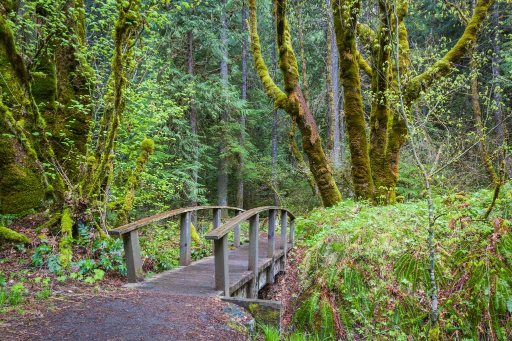 Yachats, Oregon: Lodging, Restaurants & More