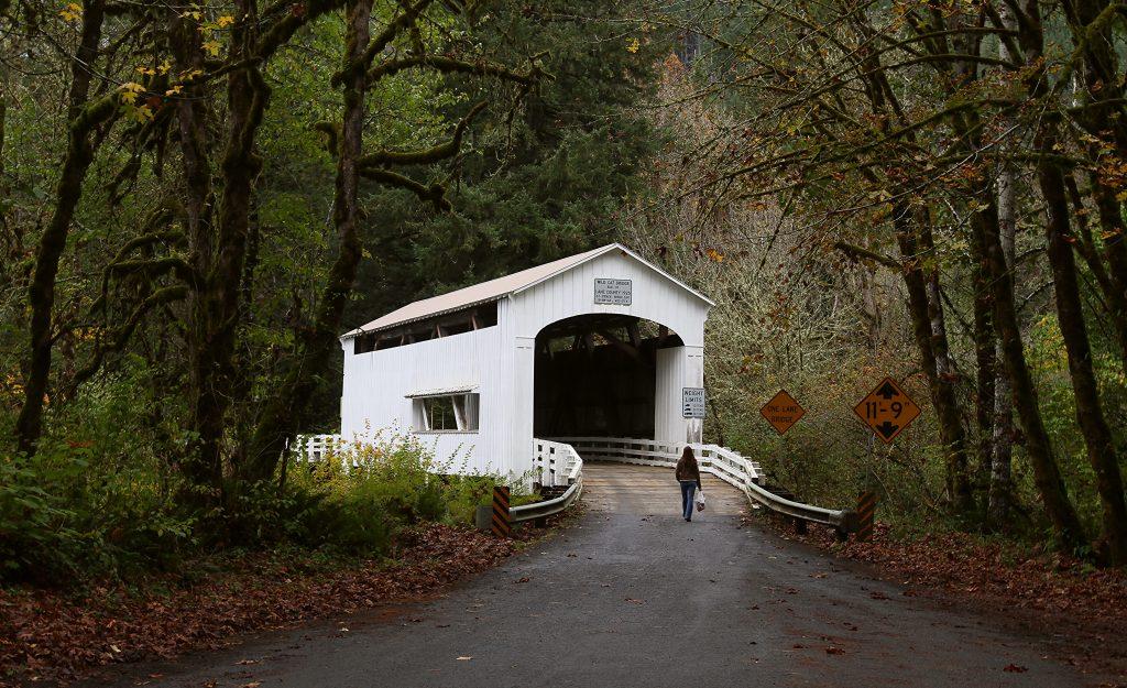 Wildcat Bridge, Yachats, Oregon: GoRoamin travel blog