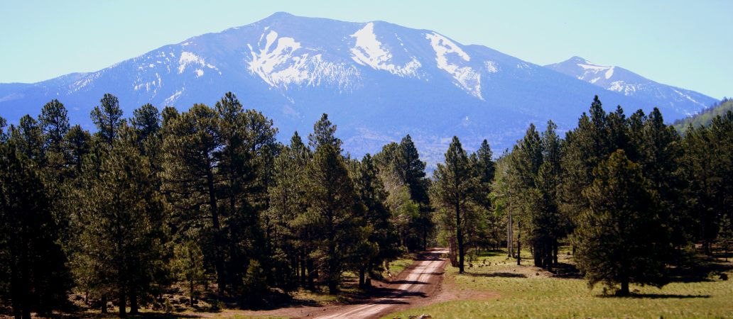 Arizona High Country, Flagstaff, GoRoamin Travel Blog
